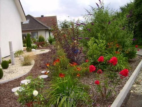 Lilien und Flox blühen vor dem Schmetterlingsflieder
