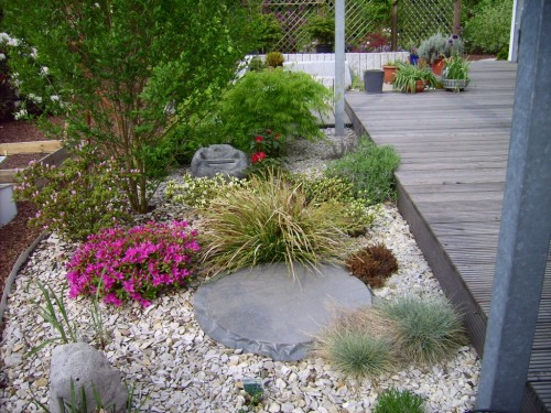 sachiko s kleines garten blog rhododendron bl te im kiesbeet. Black Bedroom Furniture Sets. Home Design Ideas