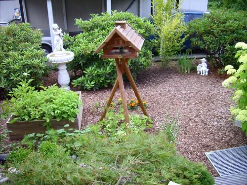 Unter dem Vogelhaus kommen Bohnen zum Vorschein